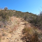 Trails and Trails